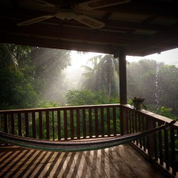Lovely, lovely rain on my veranda!